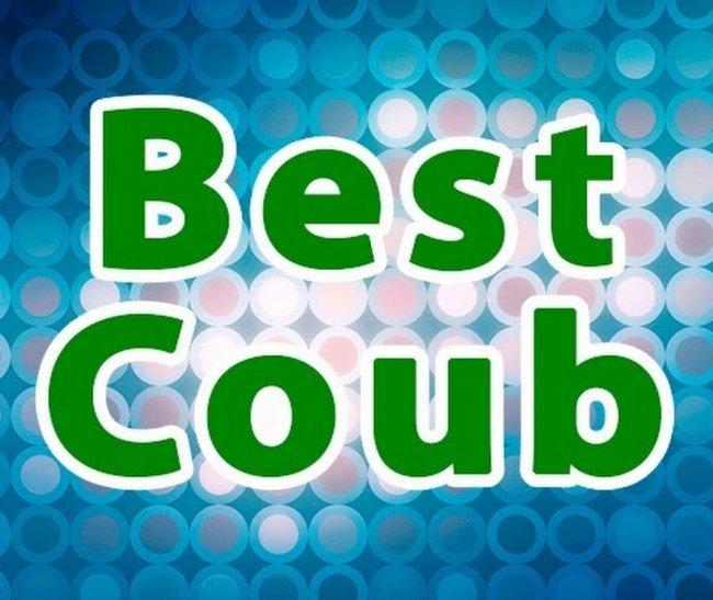 Несколько минут хорошего настроения (Best Coub)!