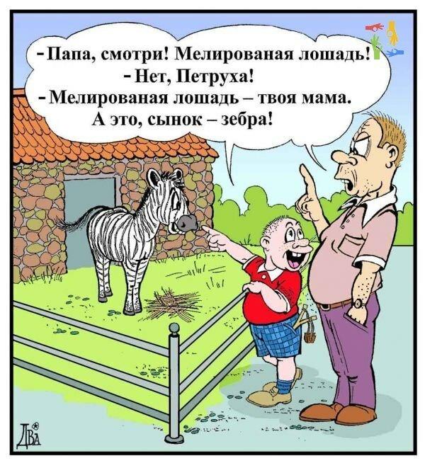 Год картинки, картинки анекдоты приколы для детей