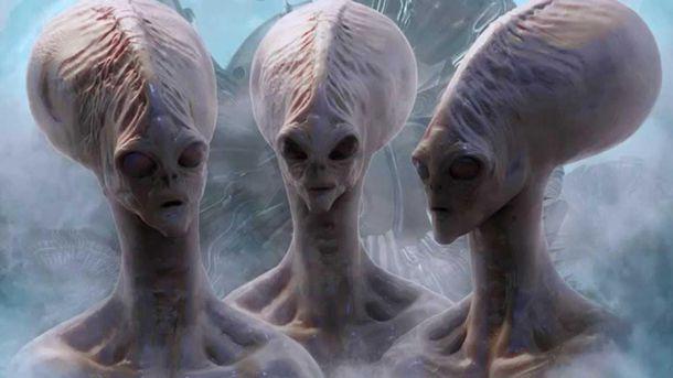 Пришельцы в тундре
