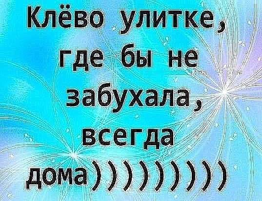 Шахерезада сказала: - Сердце женское не камень... Анекдоты (22.02.19)