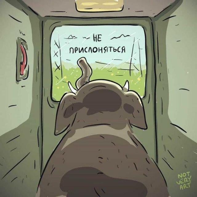 может, сделать картинки понимай буквально российской художественной гимнастики